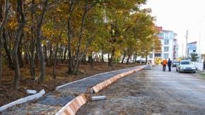 Bafra Belediyesi, Kent Ormanı Kurma Çalışmalarına Başladı