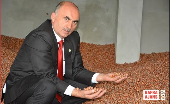 """Gülal; """"600 Bin Ton Fındık Üretimi Gerçekleşti"""""""