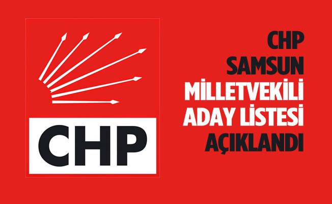 CHP Samsun Milletvekili Adayları Belli Oldu
