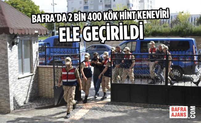 """Bafra İlçe Jandarmadan """"ZEHİR"""" Operasyonu"""