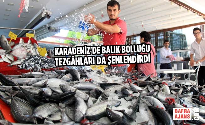 Karadeniz'de Balık Bolluğu Tezgâhları Da Şenlendirdi