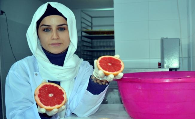 Sağlıklı gıda için yola çıkıp meyve cipsi üretim tesisi kurdu