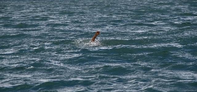 Alaçam'da Bir Kişi Denizde Boğuldu