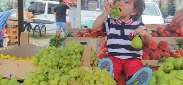 Çocuk Beslenmesinde Meyve Ve Sebze Tüketiminin Önemi