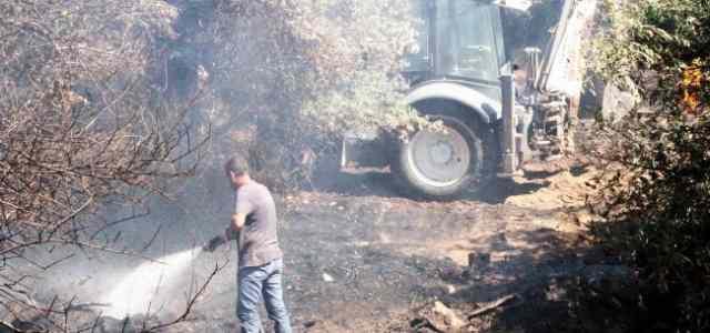 Güre'de Zeytin Ağaçları Yandı