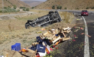 Sebze yüklü kamyonet devrildi: 2 yaralı