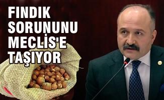 Usta; Fındık Sorununu Türkiye Büyük Millet Meclisi'ne Taşıyor
