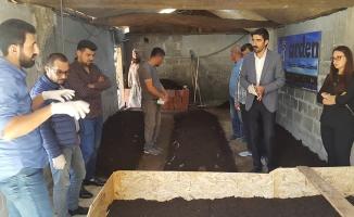Bafra GİAD'dan Organik TARIM için Solucan Gübresi Projesi