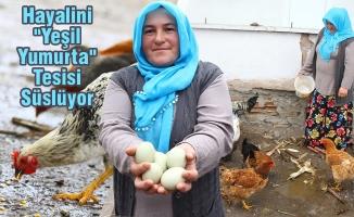 """Örnek Girişimci Kadının Hayalini """"Yeşil Yumurta"""" Tesisi Süslüyor"""