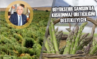 Samsun'da Kuşkonmaz Üreticiliği İçin Kollar Sıvandı