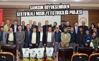 Büyükşehirden Sertifikalı Mısır Yetiştiriciliği Projesi