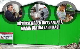 Büyükşehirden Hayvanlara Mama Üretim Fabrikası