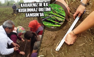 Karadeniz'de İlk Kuşkonmaz Üretimi Samsun'da