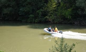 Irmağa giren yunusu kurtarma çalışması sonlandırıldı