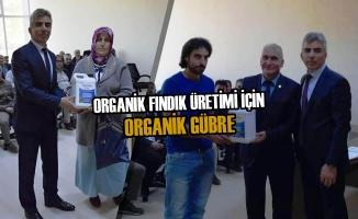 Organik Fındık Üretimi İçin Organik Gübre