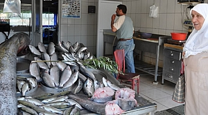 2,5 Metre Yayın Balığını Görenler Şaşırdı