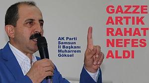 Göksel, 'Türkiye, Mazlum Milletlerin Hamisidir'
