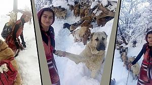 Rizeli Hamdu Sena, Hayvan Sevgisiyle Örnek Oldu