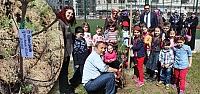 29 Ekim İlkokulu'ndan Orman Haftası...