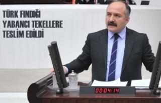 """Usta; """"Türk Fındığı Yabancı Tekellere Teslim..."""