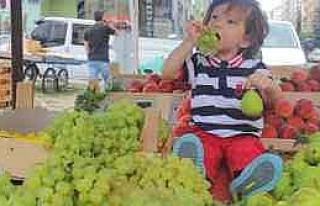 Çocuk Beslenmesinde Meyve Ve Sebze Tüketiminin Önemi...