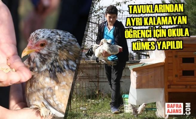 Tavuklarından Ayrı Kalamayan Öğrenci İçin Okula Kümes Yapıldı
