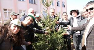 Bafra'da Orman Haftası Etkinlikleri