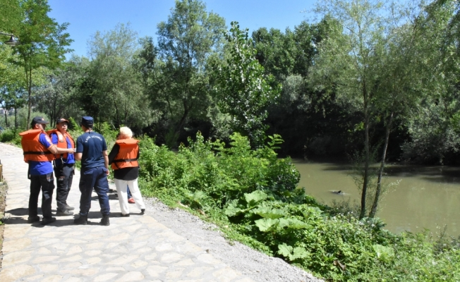 Irmağa giren yunus kurtarıldı