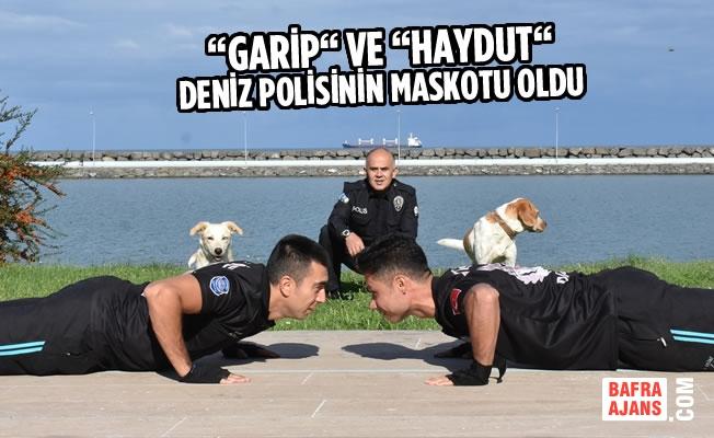 """""""Garip"""" ve """"Haydut"""" Deniz Polisinin Maskotu Oldu"""