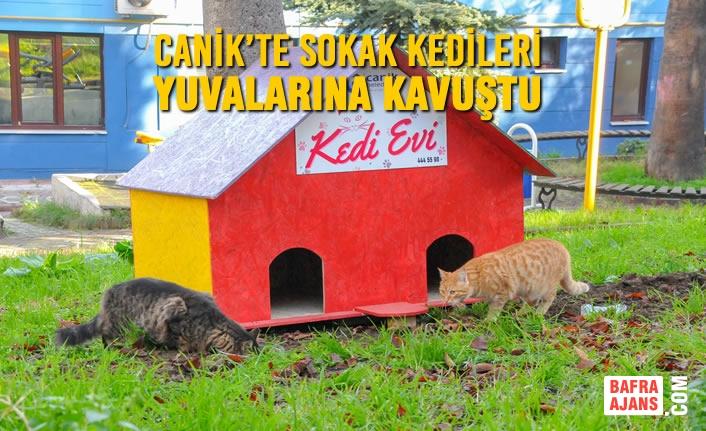 Canik Belediyesi İlçenin Muhtelif Yerlerine Kedi Evleri Yerleştirdi