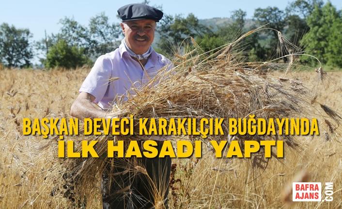Başkan Cemil Deveci Karakılçık Buğdayında İlk Hasadı Yaptı