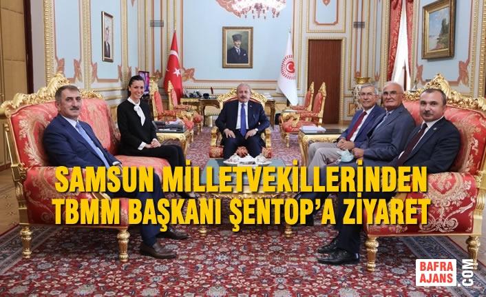 Samsun Milletvekillerinden TBMM Başkanı Şentop'a Ziyaret