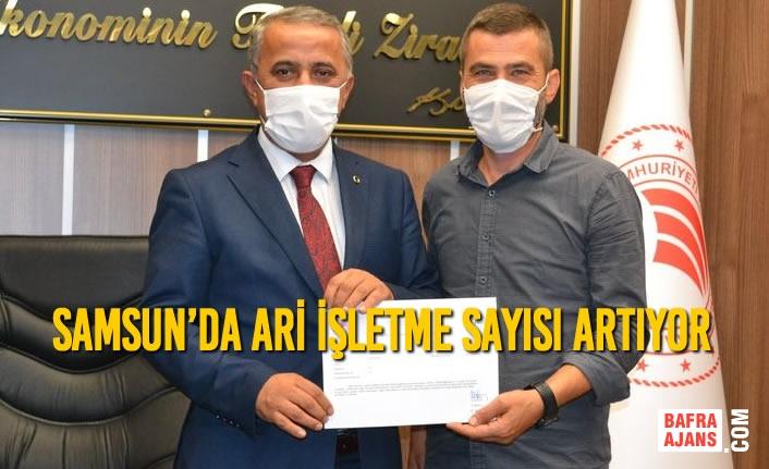 Samsun'da Ari İşletme Sayısı Artıyor