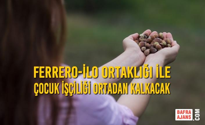 FERRERO-İLO Ortaklığı İle Çocuk İşçiliği Ortadan Kalkacak
