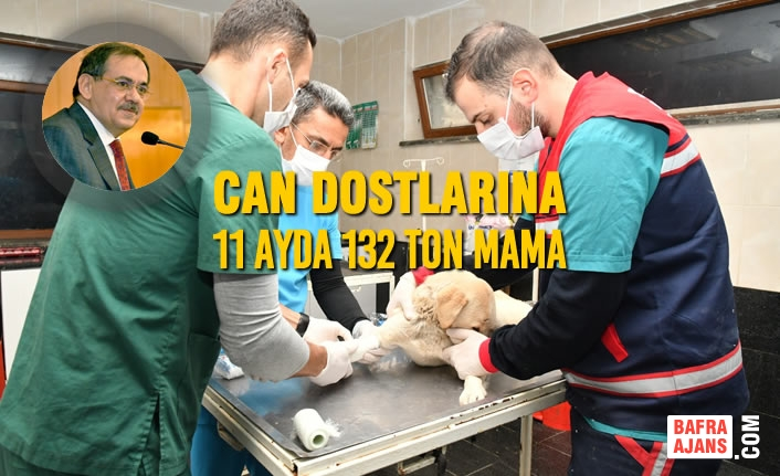 Can Dostlarına 11 Ayda 132 Ton Mama