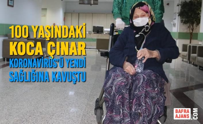 Koronavirüs Tedavisi Gören 100 Yaşındaki Koca Çınar Sağlığına Kavuştu