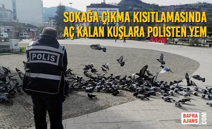Sokağa Çıkma Kısıtlamasında Aç Kalan Kuşlara Polisten Yem