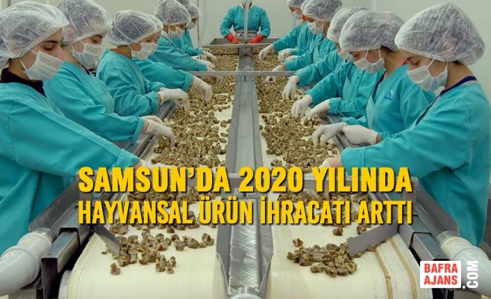 Samsun'da 2020 Yılında Hayvansal Ürün İhracatı Arttı