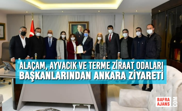 Alaçam, Ayvacık ve Terme Ziraat Odaları Başkanlarından Ankara Ziyareti