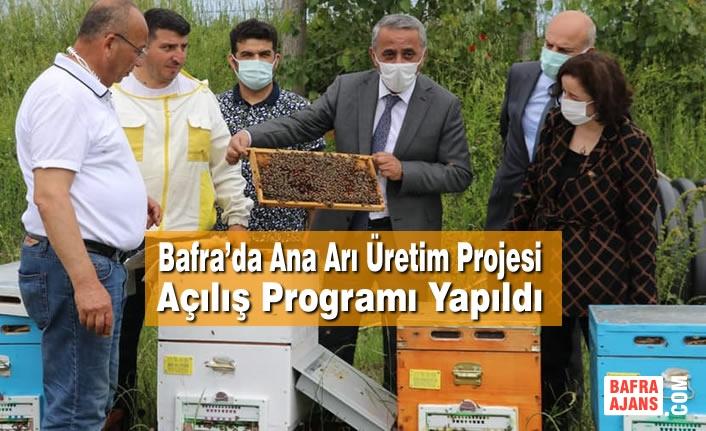 Bafra'da Ana Arı Üretim Projesi Açılış Programı