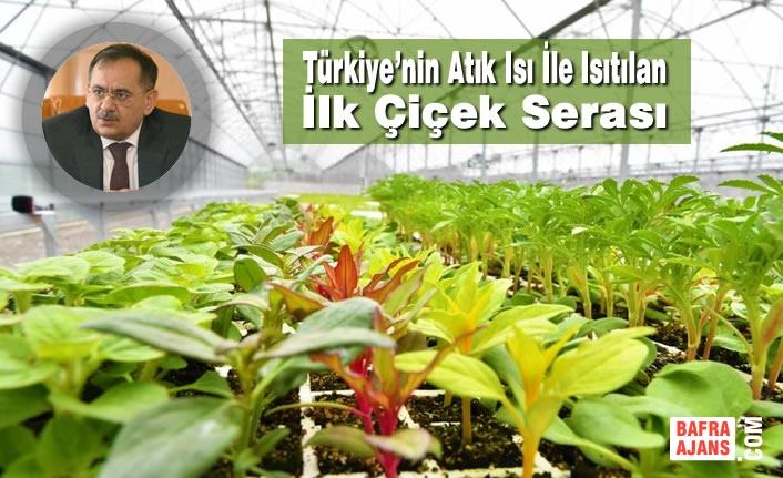 Türkiye'nin Atık Isı İle Isıtılan İlk Çiçek Serası