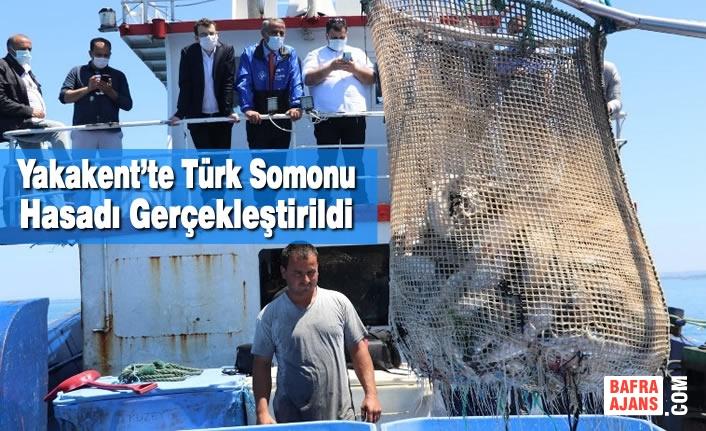Yakakent'te Türk Somonu Hasadı Gerçekleştirildi