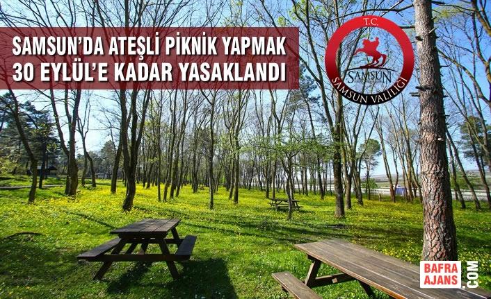 Samsun'da Ateşli Piknik Yapmak 30 Eylül'e Kadar Yasaklandı