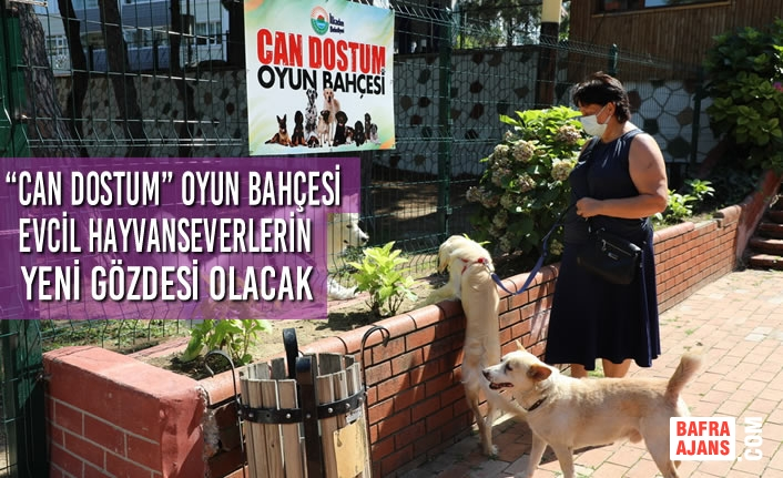 """""""Can Dostum"""" Oyun Bahçesi Evcil Hayvanseverlerin Yeni Gözdesi Olacak"""
