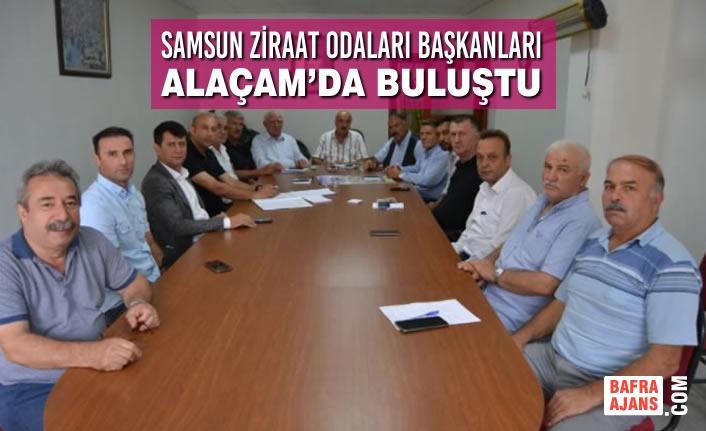 Samsun Ziraat Odaları Başkanları Alaçam'da Buluştu