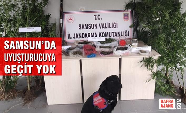 Samsun'da Uyuşturucuya Geçit Yok