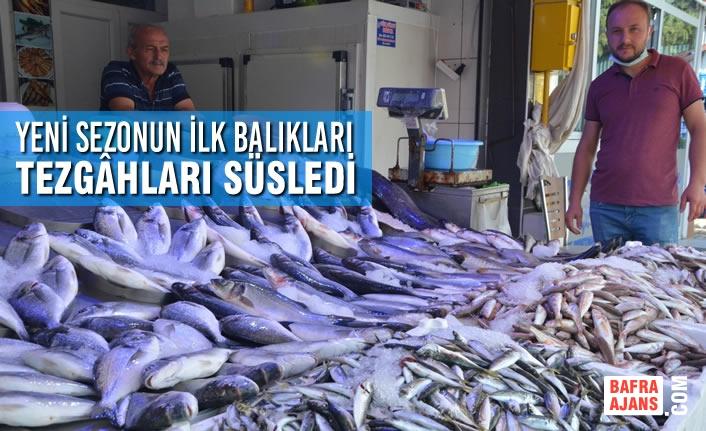 Yeni Sezonun İlk Balıkları Tezgâhları Süsledi