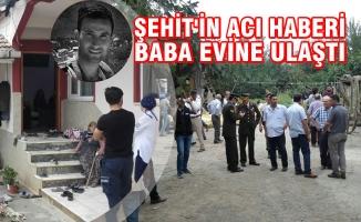Şehit'in Baba Evine Acı Haber Ulaştı