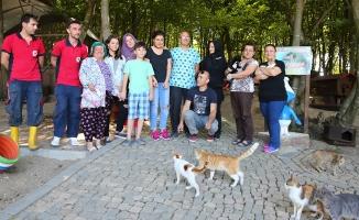 """""""Kedi Kasabası""""nın Ziyaretçileri Bayram Tatilinde Arttı"""
