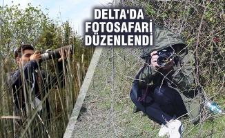 Kızılırmak Deltası Kuş Cenneti'nde Fotosafari